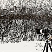 Снайпер... :: Кай-8 (Ярослав) Забелин