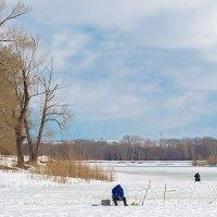 Сезон зимней рыбалки заканчивался :: Любовь Потеряхина