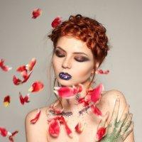 sparkles :: Sandra Snow