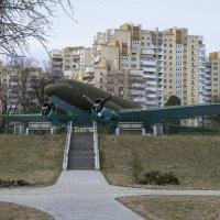 На фоне городского пейзажа :: Игорь