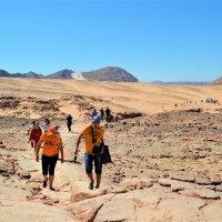 Дорога в Цветной каньон — Египет :: Клара