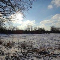 Вспоминая редкие зимние снежные деньки :: Маргарита Батырева
