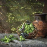 Натюрморт с молодыми лесными орешками :: Ирина Приходько