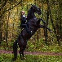 На коне! :: Ева Олерских