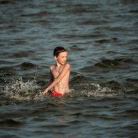 Море :: Евгеша Сафронова