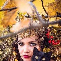 Осень) :: Екатерина Бражнова