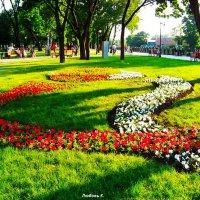 На Лопанской набережной. Харьков. :: Любовь К.