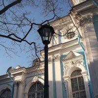Великолепие Собора :: Svetlana Lyaxovich