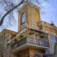 Весна в Одессе. :: Вахтанг Хантадзе