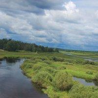 Летний эскиз реки Луга... :: Tatiana Markova