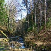 Горный альпийский ручей :: Galina Dzubina