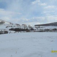 Зима в апреле на Южном Урале. :: РУСЛАН ИЛЬЧИНСКИЙ