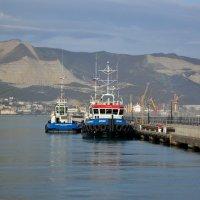 Незаменимые портовые трудяги... Новороссийск :: Ruslan
