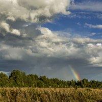 пейзаж с радугой :: Владимир Иванов