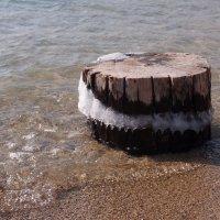 Одинокий морской пень... :: Alexander Borisovsky