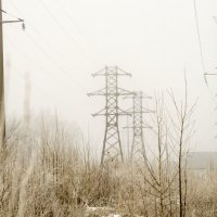 Утренний туман :: Вера Сафонова