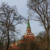 Окунуться в детство у кремлевских стен! :: Юрий Поляков