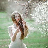Весенняя нежность :: Маргарита