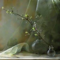 Весна... :: Вера