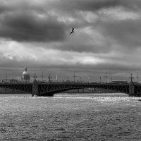 Троицкий мост. Санкт-Петербург. :: Сергей Еремин