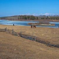 Весна в Тункинской долине :: Анатолий Иргл