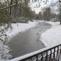 Осень. Первый снег :: Дмитрий Рогожин