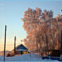 на закате :: Алёна PRIVALOVA