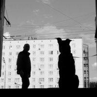 Городские. :: Оксана ДоброВольская