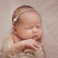 Фотосессия новорожденных Йошкар-Ола и Чебоксары :: Катя Грин