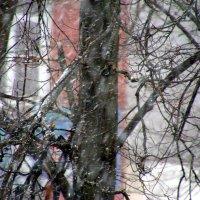 а снег идёт :: Валерий Самородов