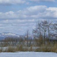 Панорама Потанины горы. :: Сергей Адигамов