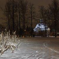 В парке Победы, СПб :: Александр Кислицын