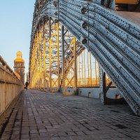 Большеохтинский мост :: Frol Polevoy