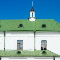 Посиделки на крыше :: Николай Н