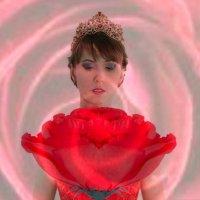Роза :: Юлия Харланова