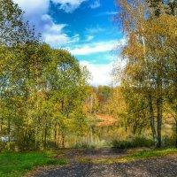 Осенний пейзаж :: Милешкин Владимир Алексеевич