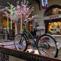 Я буду долго гнать велосипед. :: Татьяна Помогалова