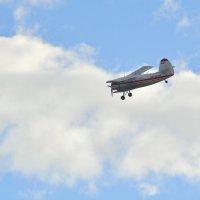 Самолет АН-2 в небе над Онегой вечером 6 апреля. :: Марина Никулина