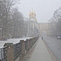 снежный день в Царском :: Елена