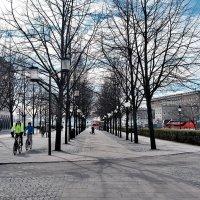 Королевский сад Стокгольм :: Swetlana V