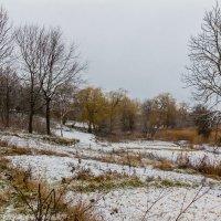 Первый снег :: Виктор