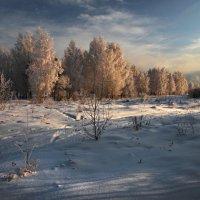 Утром по дороге к Ангаре... :: Александр Попов