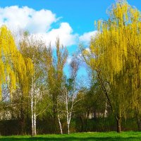 Весна.....)))) :: Любовь К.
