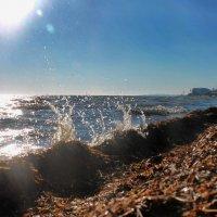 Волна :: Александр Довгий
