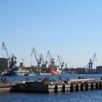 Порт :: Вера Щукина