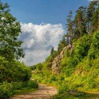Кавказский биосферный заповедник :: Аnatoly Gaponenko
