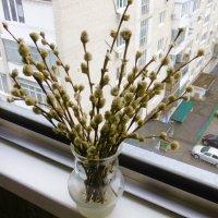 Вербное воскресенье, а за окном дождь :: татьяна