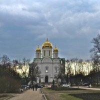 Екатерининский собор в Царском Селе :: Елена