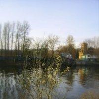 у реки :: Miko Baltiyskiy