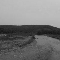 Река  Быстрица  Надворнянская  в  Надворной :: Андрей  Васильевич Коляскин